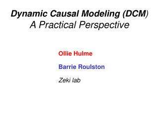 Dynamic Causal Modeling DCM  A Practical Perspective