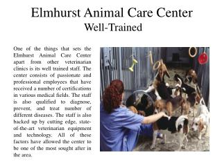 Elmhurst Animal Care Center  Well-Trained