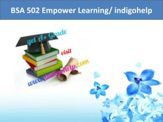 BSA 502 Empower Learning/ indigohelp