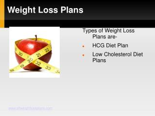 Weight Loss Plan