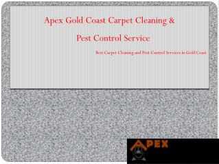 Apex Gold Coast Carpet Cleaning, Termite & Pest Control Service