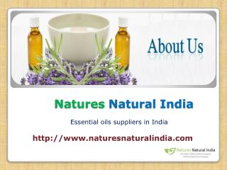 Bulk Essential Oils in India at Naturesnaturalindia.com