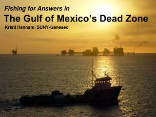 The Gulf of Mexico s Dead Zone