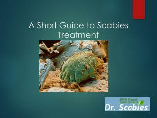 A short guide to scabies treatment 2016