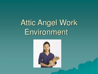 Attic Angel Work Environment