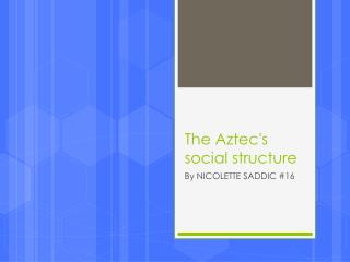 The Aztec's social structure