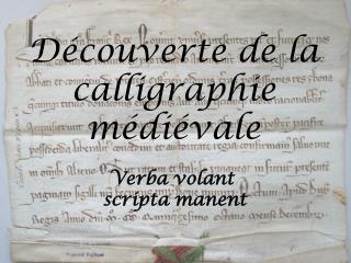 Découverte de la calligraphie médiévale