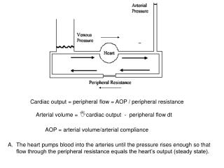 The heart pumps blood into the arteries until the pressure rises enough so that flow through the peripheral resistance e