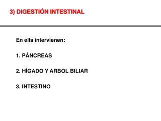 3) DIGESTIÓN INTESTINAL