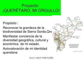 Proyecto :  ¡QUERÉTARO, MI ORGULLO!
