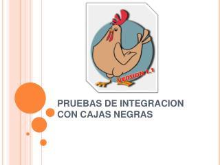 PRUEBAS DE INTEGRACION CON CAJAS NEGRAS