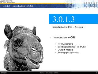 3.0.1.3 Introduction to CGI – Session 1