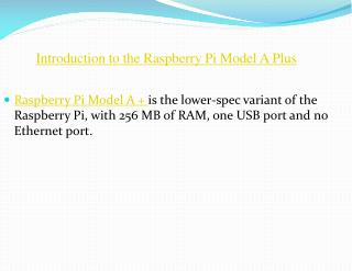 Raspberry Pi Model a Plus India