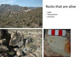 Rocks that are alive ---Light ---Temperature ---moisture