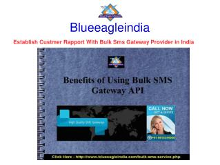 Bulk Sms Gateway Provider In India  Establish Rapport with Custmer