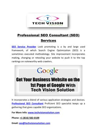 Professional SEO Consultant (SEO) Services