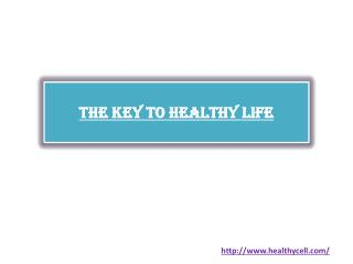 Nutrition Supplements The Key to Healthy Life