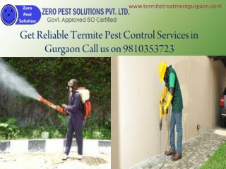 Get Reliable Termite Pest Control Services in Gurgaon Call us on 9810353723