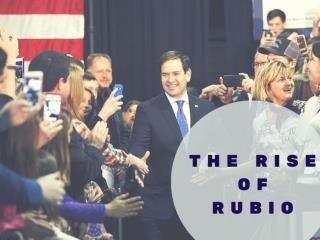 The rise of Rubio