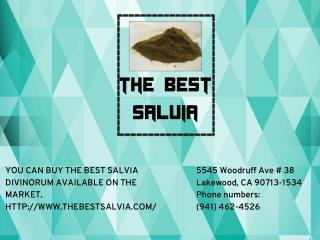 Salvia extract 10x