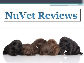 Nuvet Labs Reviews - Nuvet Reviews