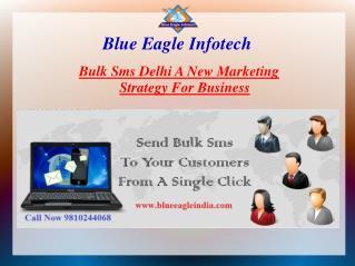 Bulk Sms provider in delhi. A new marketing strategy