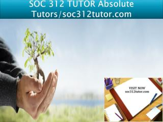SOC 312 TUTOR Absolute Tutors/soc312tutor.com
