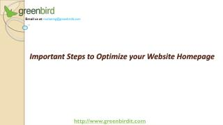 Important Steps to Optimize your Website Homepage