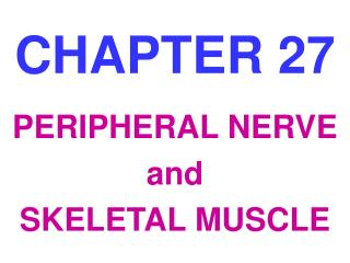 PERIPHERAL NERVE and SKELETAL MUSCLE