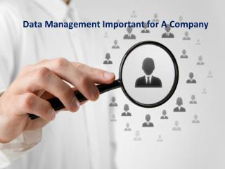 Data Management Important for A Company