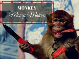 Monkey money makers