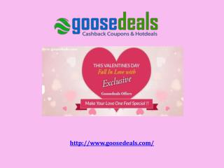 Looking For Unique and useful Valentine's Gifts Shop At goosedeals.com