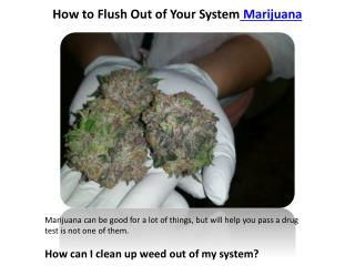 How to Flush Out of Your System Marijuana