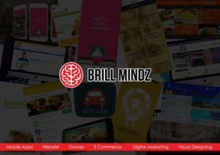 Brill Mindz Technologies Profile