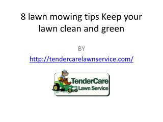 8 lawn mowing tips: Keep your lawn clean and green