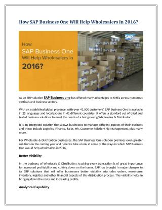 How SAP Business One Will Help Wholesalers in 2016?