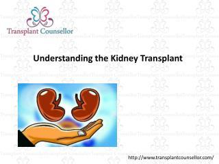 Kidney Transplantation India
