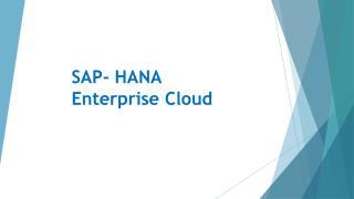 Ravi Namboori - SAP- HANA  Enterprise Cloud