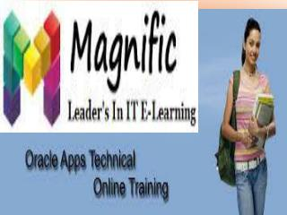 Oracle Apps Technical Online Training in USA