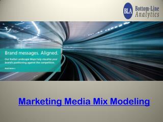 Marketing Investment Optimization