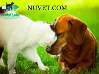 Nuvet Labs Reviews - Nuvet Plus