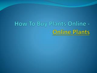 How To Buy Plants Online - Online Plants
