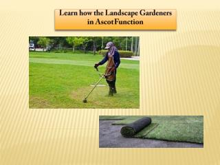 Learn how the Landscape Gardeners in Ascot Function