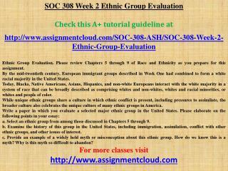 SOC 308 Week 2 Ethnic Group Evaluation