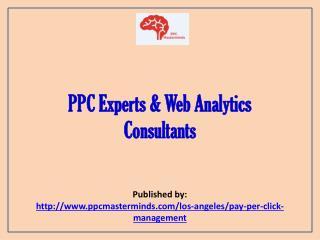 PPC Experts & Web Analytics Consultants