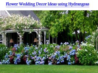 Flower Wedding Decor Ideas using Hydrangeas