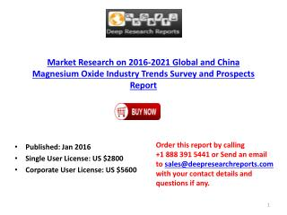 Global and China Magnesium Oxide Industry Development Trend Analysis and 2021 Prospects Report