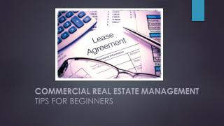 Commercial real estate management tips for beginners