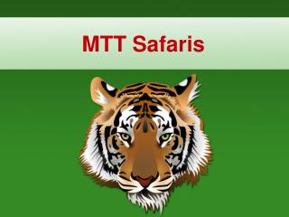 Wildlife Safari Tour in Africa: Insider Secrets for the Photographic Safari