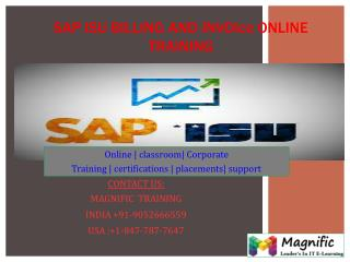 SAP ISU BILLING&INVOICE ONLINE TRAINING IN USA|UK|CANADA